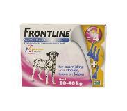 frontline Hond spot on large (1 stuks, 0.04 kg)
