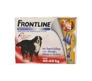 frontline Hond spot on xl (1 stuks, 0.05 kg)