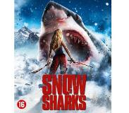 Splendid Snow Sharks