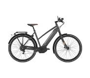 Gazelle CityZen Speed 380 500Wh 2019 Dames