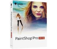 Corel PaintShop Pro 2018 (Windows) 1 Device NL (ESD)