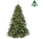 Triumph tree Triumph Treekerstboom Scandia H120D89 Groen Tips 279