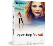Corel PaintShop Pro 2018 Win 1 Device (NL)