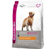 Eukanuba EUKANUBA GOLDEN RETRIEVER 2,5KG