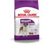 Royal Canin Giant Adult 15000g Volwassene