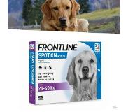 Proline Frontline Spot-on Hond Large 4 PIP