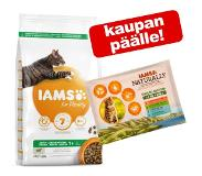 IAMS Vitality Cat indoor chicken 3 kg