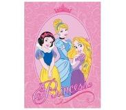 Disney Princess Glamour Speelkleed 95x133cm