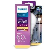 Philips Lamp 8718696739402