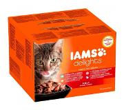 IAMS Delights Land en Zee collectie in Jelly - Kat - Natvoer - 24 x 85 gr