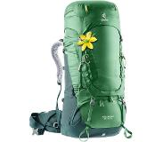 Deuter Aircontact 60 + 10 SL Backpack leaf/forest backpack