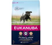 Eukanuba Developing Junior Large Breed Kip - Hondenvoer - 3 kg