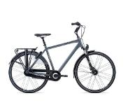 Giant Ultimo 2 2020 Heren - XL - Solid Grey Stadsfiets
