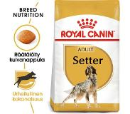 Royal Canin 12kg Breed Setter Adult Royal Canin Hondenvoer