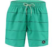 Oneill Boardshort O'Neill Men Contourz Green Blue-XXL