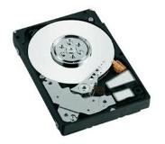 "Western Digital Laptop Everyday 2.5"" 1000 GB SATA II HDD"