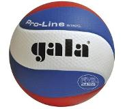 Gala Pro-line 5591S10 Volleybal