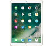 Apple iPad Pro 512GB 3G 4G Goud tablet