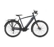 Gazelle Cityzen Speed 500Wh 2018 Heren 45km