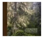 book 9789523010208 SUOMALAINEN AARNIOMETSÄ (ENGLANNINKIELINEN)