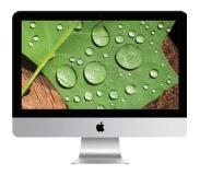Apple 21 met Retina 4K-display MNE02N/A