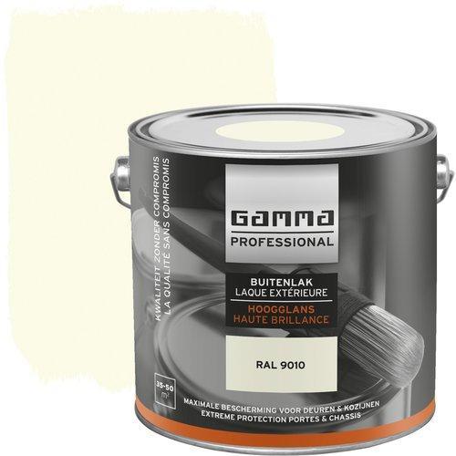 Extreem Gamma professional Verf, laagste prijs   VERGELIJK.NL WE51